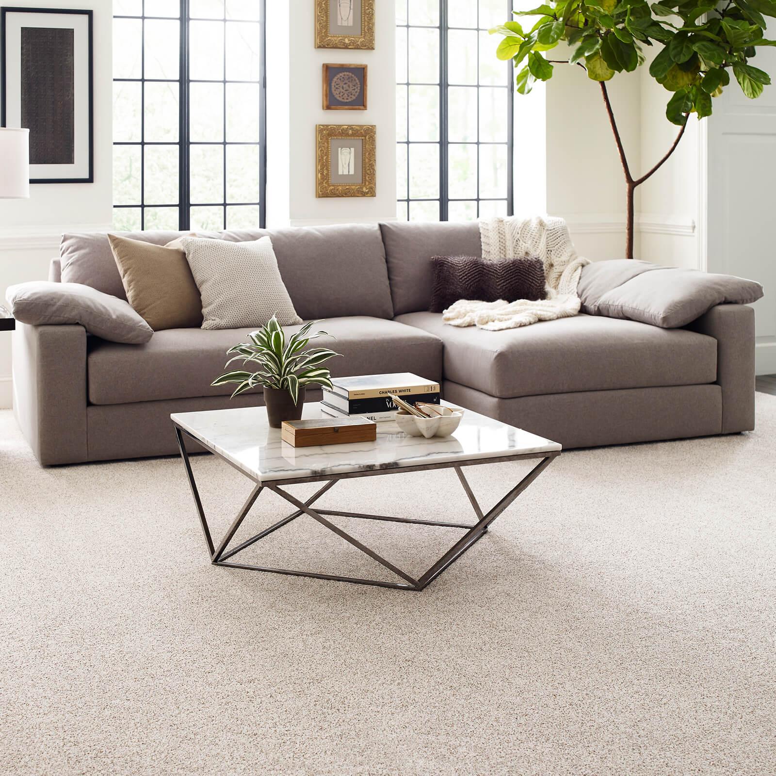 Living room carpet flooring | Carefree Carpets & Floors