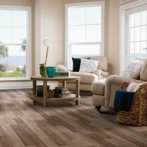 Read the Carefree Carpets & Floors Blog