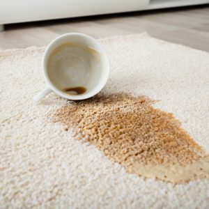 Professional Rug Cleaning | Carefree Carpets & Floors